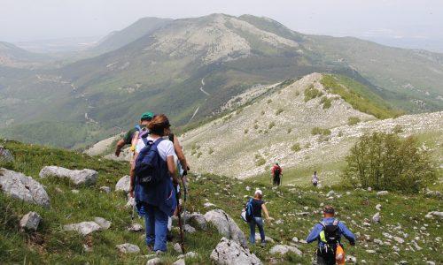 Escursioni Parco nazionale del Cilento